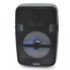 Портативна акустична колонка ESS-110 Чорний