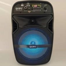 Портативна bluetooth колонка Kipo Q10 з мікрофоном Чорний